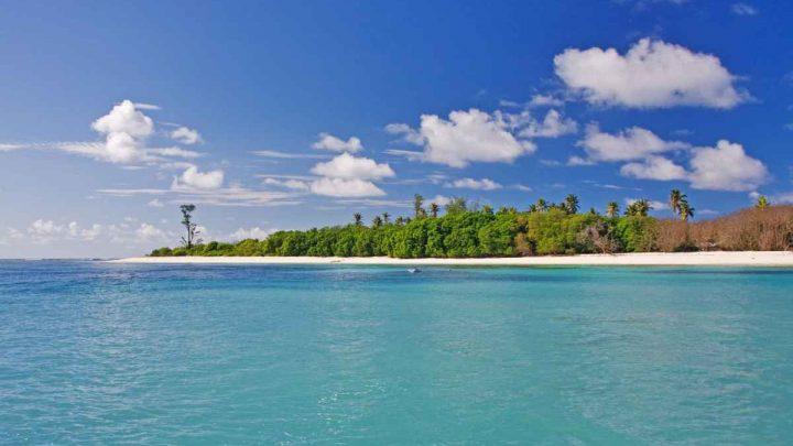 Dovolená Ostatní ostrovy - Resort Bird Island Lodge***