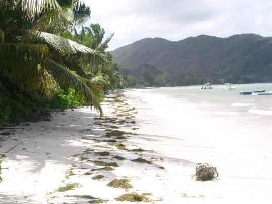Grand Anse (Praslin)
